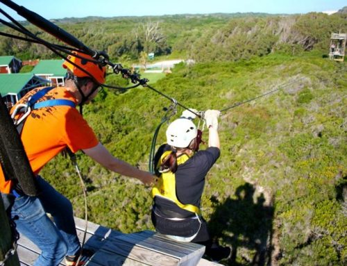 5 reasons zip-lining should be on your to-do list in 2020